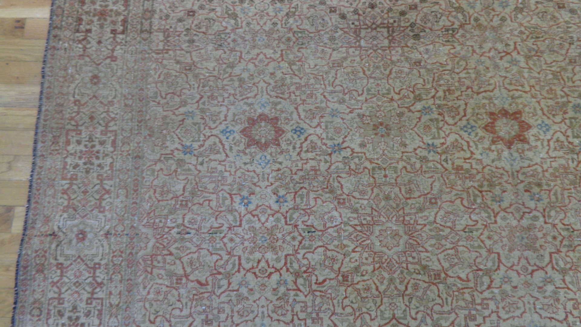 24850 persian tehran carpet 7 x 9, 10-2