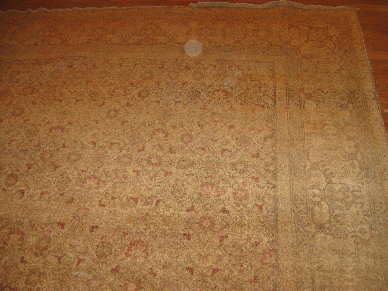 24381 antique India Amritsar carpet 9,2 x 12 -1