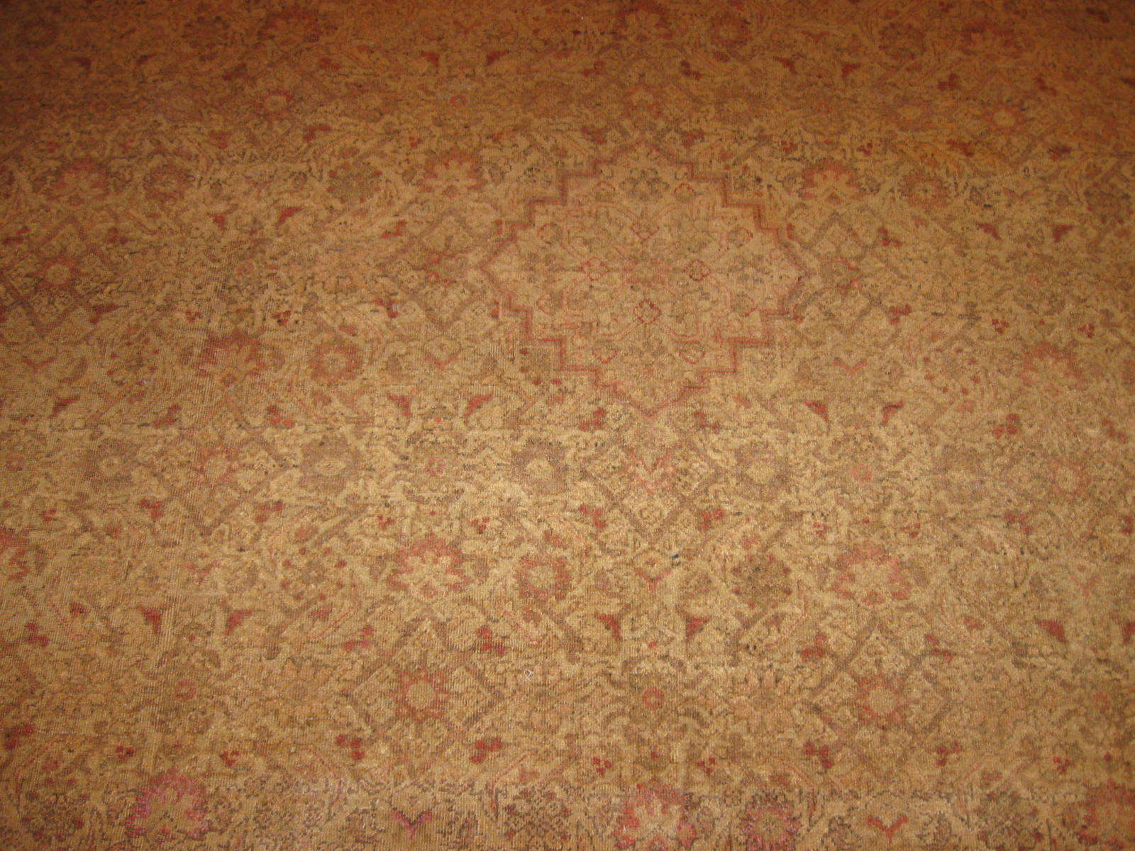 24381 antique India Amritsar carpet 9,2 x 12 -2