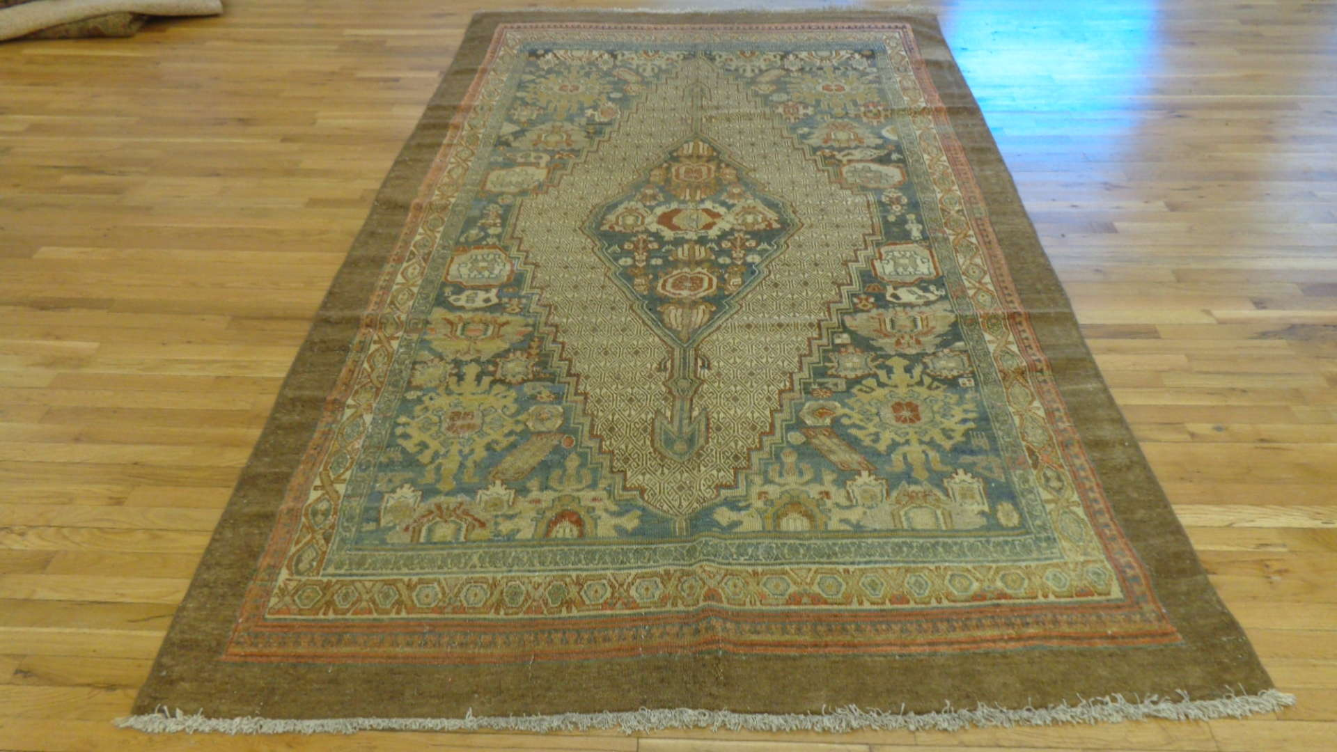 Malayer Rug | Persia | Antique ~ 1900s